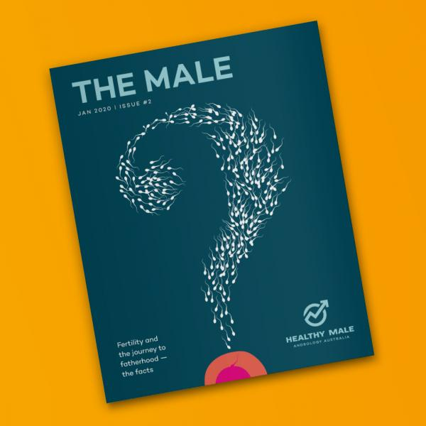 The Male issue #2